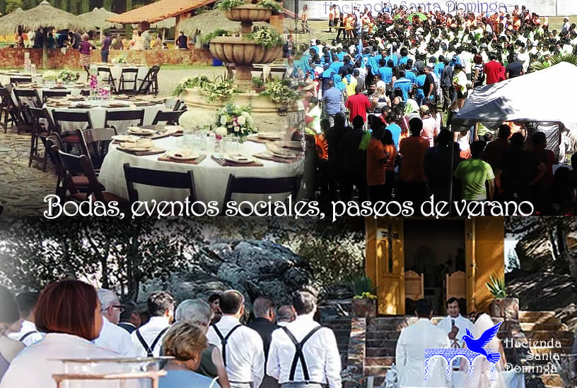 foto-eventos-bodas-movil.jpg